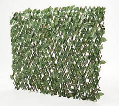 Wicker Park Single Expandable Faux Ivy Privacy Fence Qvc Com Privacy Fence Ivy Plants Fence