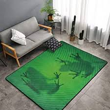 Amazon Com Frog Rug Area Rugs Home Decor Home Kitchen