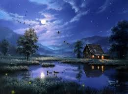 summer night sky nature background