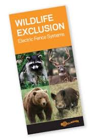 Bears Electric Fence Canada