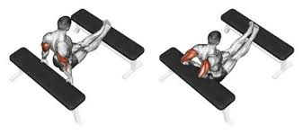 tricep dips to build arm strength and