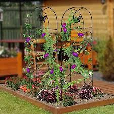 Amagabeli 60 X 18 Rustproof Black Iron Butterfly Garden Trellis For Climbing Plants Potted Vines Vegetables