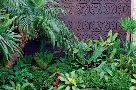 get the tropical look australian