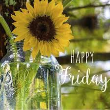 Daisybug - Happy Friday! | Facebook