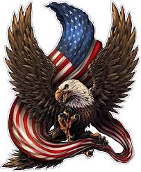 Amazon Com American Bald Eagle American Flag Wall Decor Decal X Large Is 24 0 In Size From The United States Arts Crafts Sewing