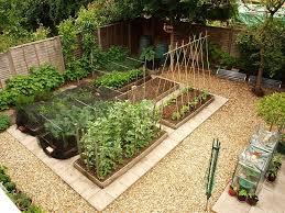 garden layout vegetable