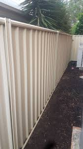 Climbers To Dress Up Colorbond Fence Page 3 Bunnings Workshop Community