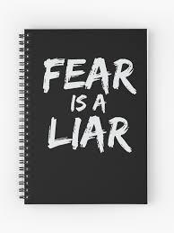 fear is a liar inspirational motivational quote entrepreneur