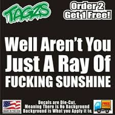 Ray Of F King Sunshine Funny Diecut Vinyl Window Decal Sticker Car Truck Jdm Ebay