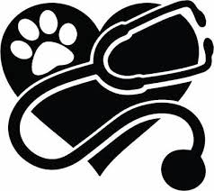 Vet Decal Rvt Veterinary Tech Veterinarian Pet Window Bumper Sticker Car Decor Ebay