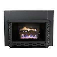 natural gas propane fireplace insert