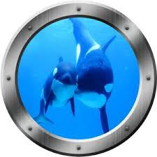 Killer Whales Ocean View 3d Window Porthole Peel And Stick Wall Decal Underwater Mural Vwaqa Po2