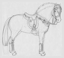 Fjord Punk By Anniehyena Tekenen Paarden