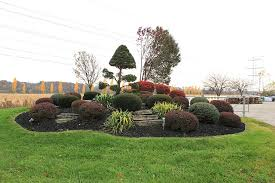 file shrubbery landscape entrance to