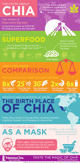 chia facts chia seed nutrition