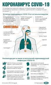 Коронавирус COVID-19 | Новости Беларуси