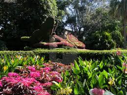 busch gardens florida license