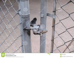 Chain Link Fence Closeup Photo Stock Photo Image Of Secured Rusty 66164058