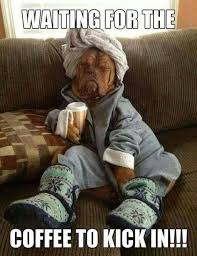 coffee #doggy #monday - Funny Coffee Memes | Facebook