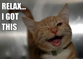 Relax... I got This - Cheer up Cat - quickmeme
