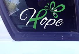 Amazon Com Hope With Green Ribbon And Butterfly Window Decal Cerebral Palsy Brain Injury Celiac Disease Lyme Disease Everything Else
