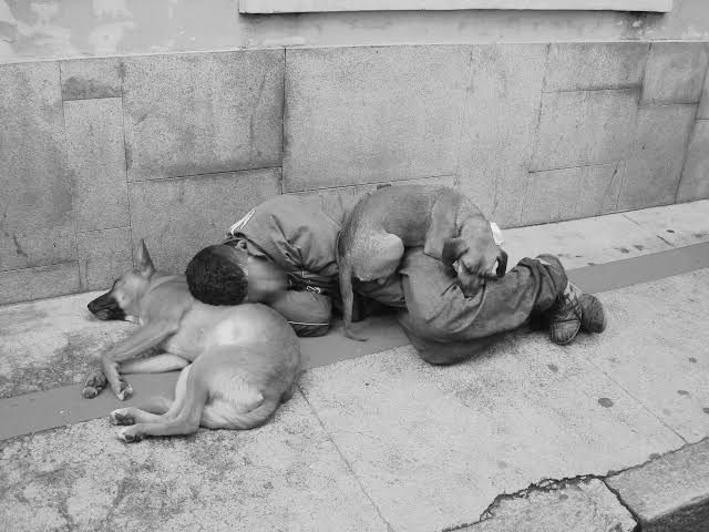 """Resultado de imagem para imagens de mendigos no frio"""""""