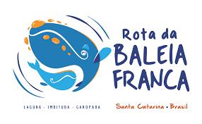 Rota da Baleia Franca: um dos maiores espetáculos de Santa ...