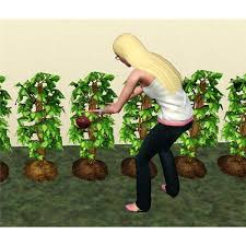 guide to the sims 3 flowers game yum