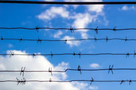 How To Use A Barbed Wire Fence Stretcher Doityourself Com