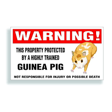 Warning Decal Property Protected By A Highly Trained Guinea Pig Pet Bumper Cage Or Window Sticker 5 75x3 25 Inch Buy Online In Colombia Solar Graphics Usa Products In Colombia