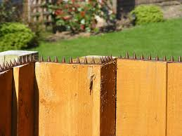 The Cactus Fence Wall Spikes Pack Of 50 22 5m To 67 5m Brown Amazon Co Uk Diy Tools