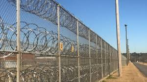 Electric Security Fence Kougar Solution Allied Services