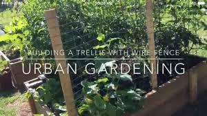Building A Trellis With Wire Fencing Urban Gardening Magnolia Street Garden Youtube