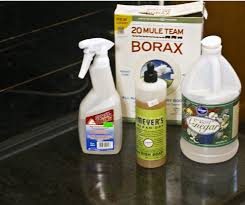 nontoxic homemade oven cleaner will