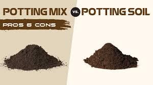 potting soil vs potting mix what s