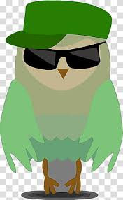 glasses cartoon owl cute owl green