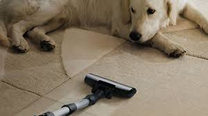 pet sn removal carpet cleaning