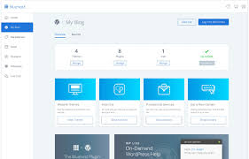 Bluehost – 'WordPress-Recommended' Hosting Provider