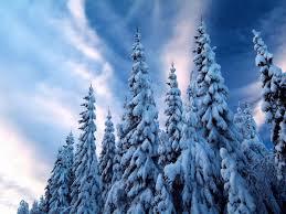 فصل الشتاء Hd خلفيات For Android Apk Download