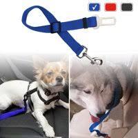 Blue Tsv All Dog Collars Leashes Walmart Com