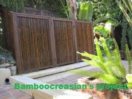 Bamboo Fence Fencing Wall Divider By Bamboo Hidden Timeless Charm Lumberjocks Com Woodworking Community