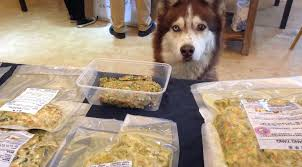 a dog s dinner homemade dog food from