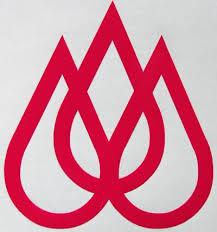 Quiksilver Travis Rice Sticker Sticker Blimp Decals