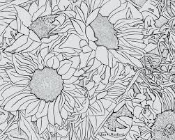 Zonnebloemen 1 Volwassen Kleurende Pagina S Kleurplaat Etsy