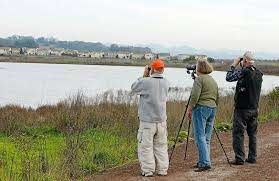 Vallejo's Flyway Festival taking place after all – Times-Herald