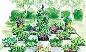 vegetable garden design ideas garden