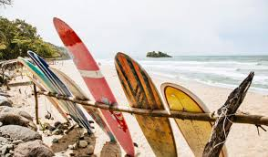visit on costa rica s caribbean coast