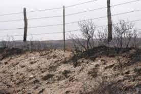 Study Shows Wildfire Does Not Damage Barbed Wire