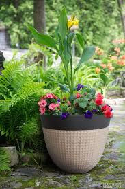 ailani resin planter 2 pack resin