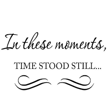 Vwaq In These Moments Time Stood Still Family Wall Decal Reviews Wayfair